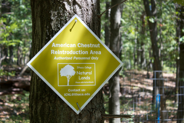 Sign marking the Ithaca College Natural Lands